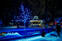 Gage Park in the late evening is a snow storm